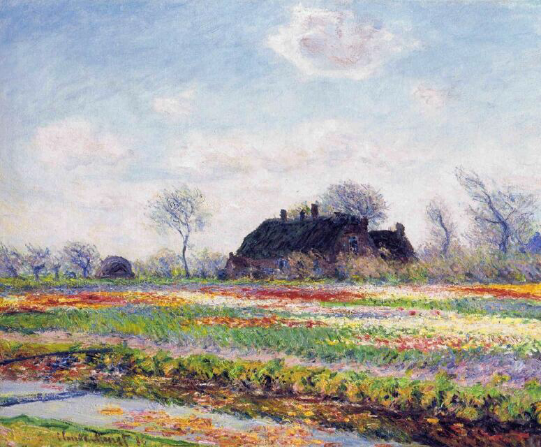 Tulip Fields at Sassenheim, near Leiden - Claude Monet